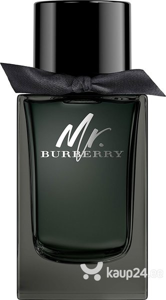 Parfüümvesi Burberry Mr. Burberry EDP meestele 150 ml