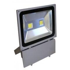 LED välisvalgustus F1201 100W