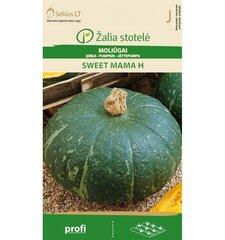 Kõrvitsaseemned Sweet mama H 5 seemet hind ja info | Kõrvitsaseemned Sweet mama H 5 seemet | kaup24.ee