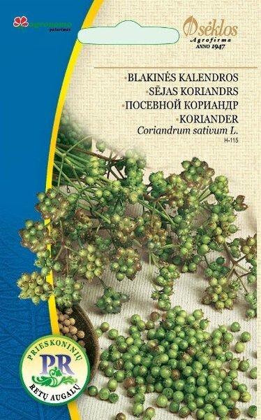 Koriander (Kinza) 4 g