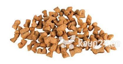 Vitamiinid kassidele Trixie Dentinos, 50 g hind