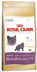 Kassitoit Royal Canin British shorthair 2 kg