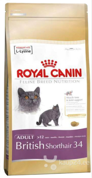Royal Canin British shorthair 4 кг цена и информация | Kuivtoit kassidele | kaup24.ee