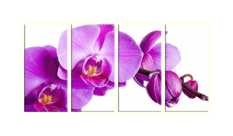 Neljaosaline maal, lilled, lilla цена и информация | Seinapildid | kaup24.ee