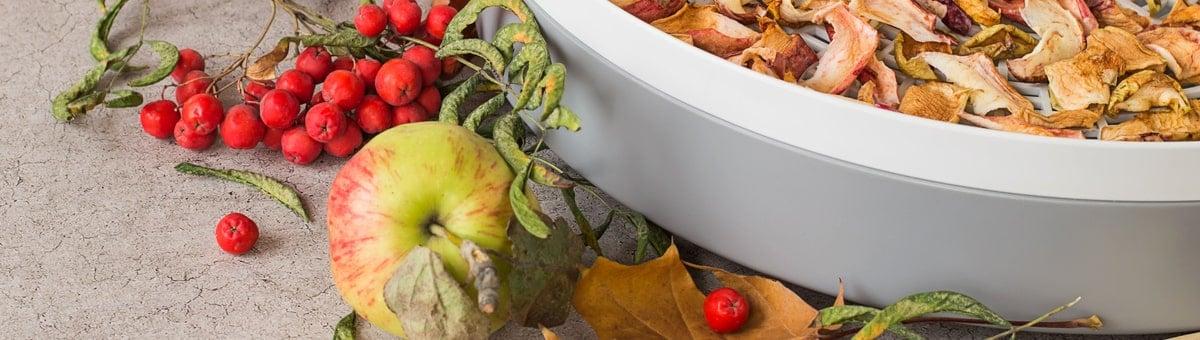 Populaarsed puuviljakuivatid: 10 parimat mudelit